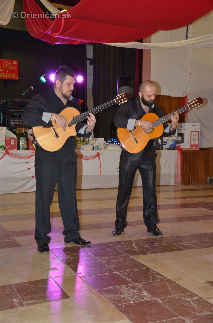 12 ples obce Drienica_07