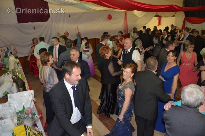 12 ples obce Drienica_08