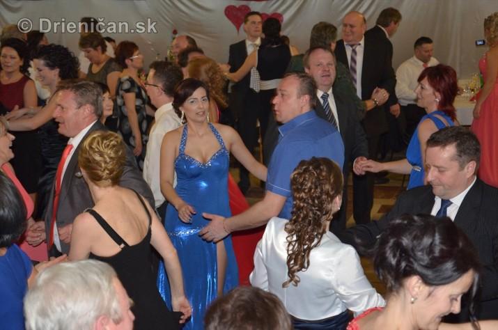 12 ples obce Drienica_10