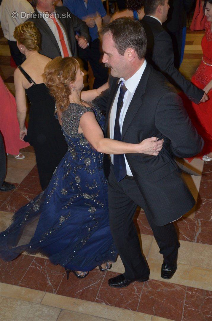 12 ples obce Drienica_11