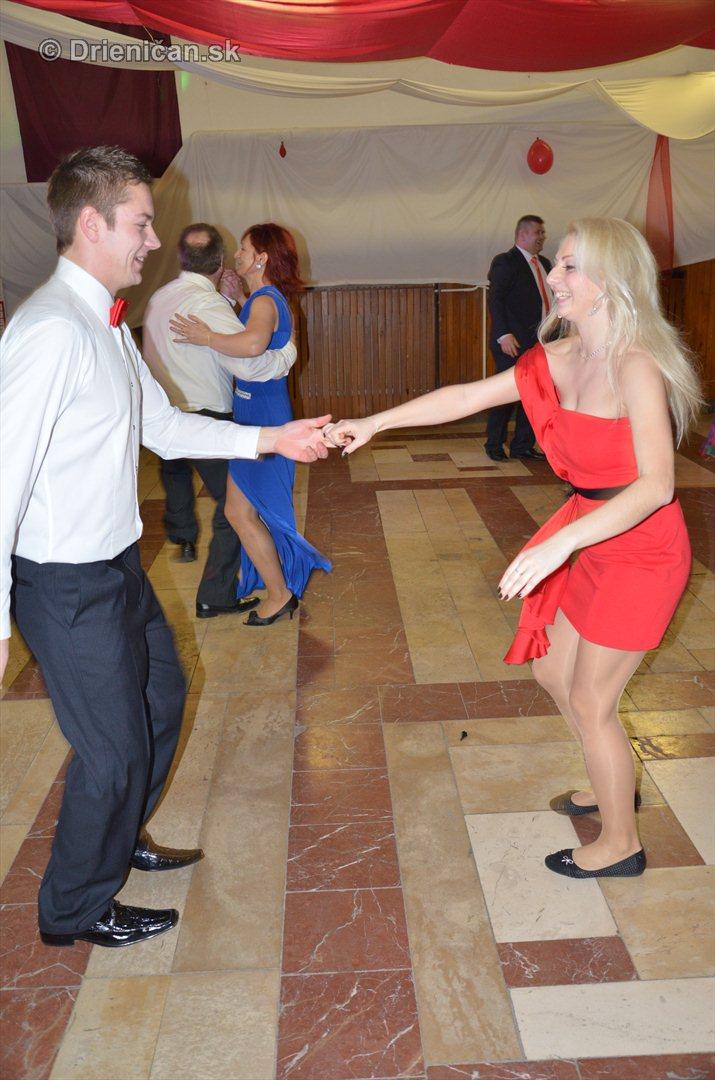 12 ples obce Drienica_15