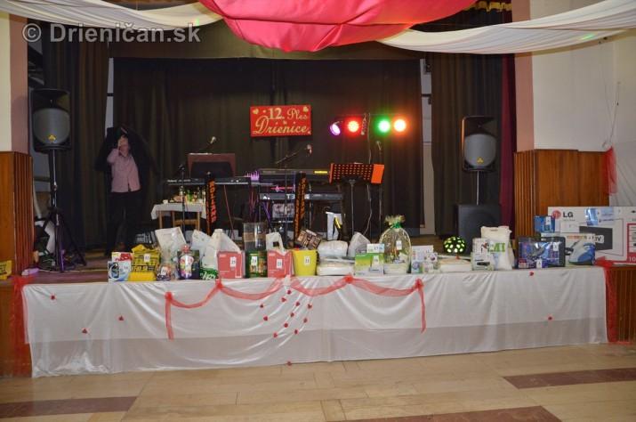 12 ples obce Drienica_33