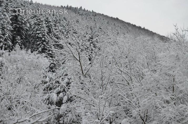 Drienica Lysa pod snehom_03