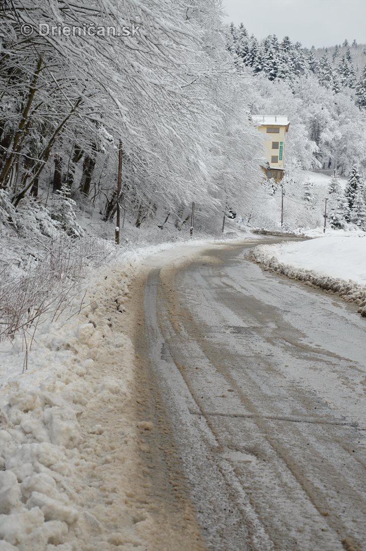 Drienica Lysa pod snehom_04