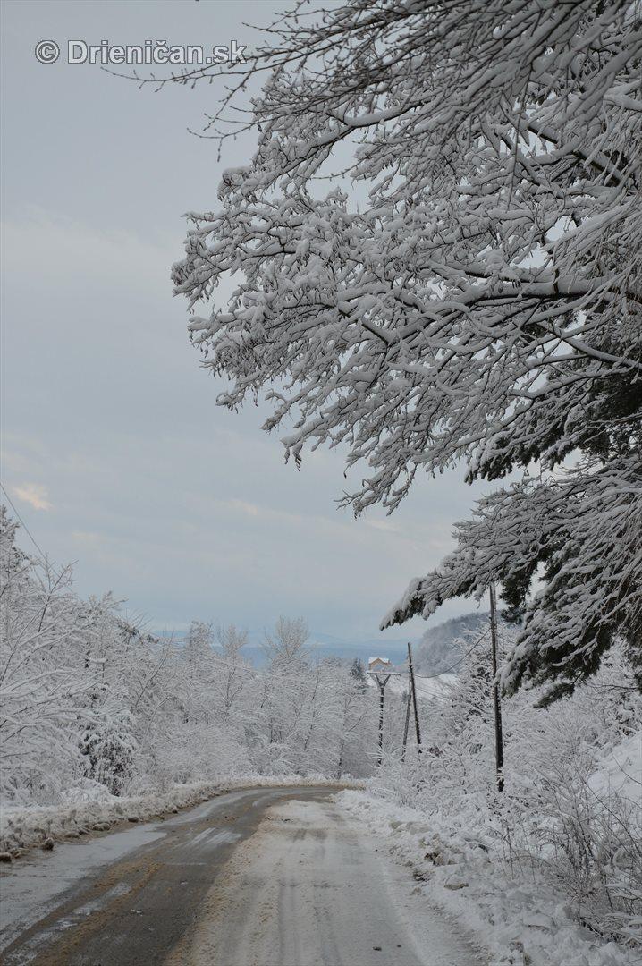 Drienica Lysa pod snehom_05