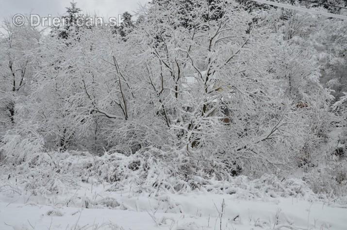 Drienica Lysa pod snehom_07