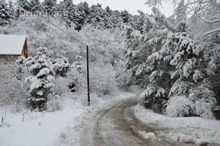 Drienica Lysa pod snehom_10