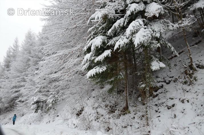 Drienica Lysa pod snehom_12