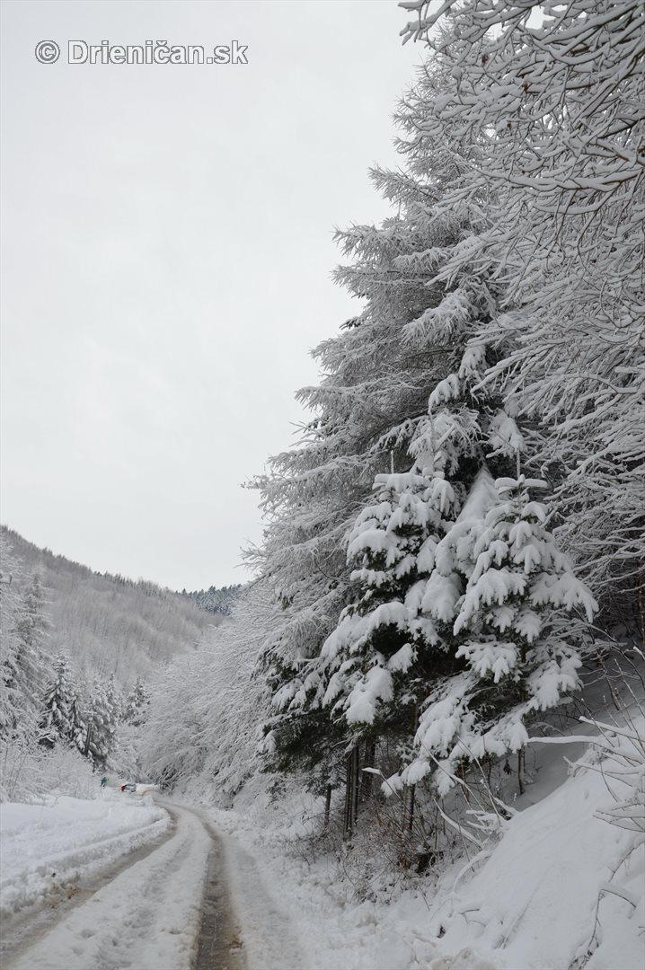 Drienica Lysa pod snehom_13