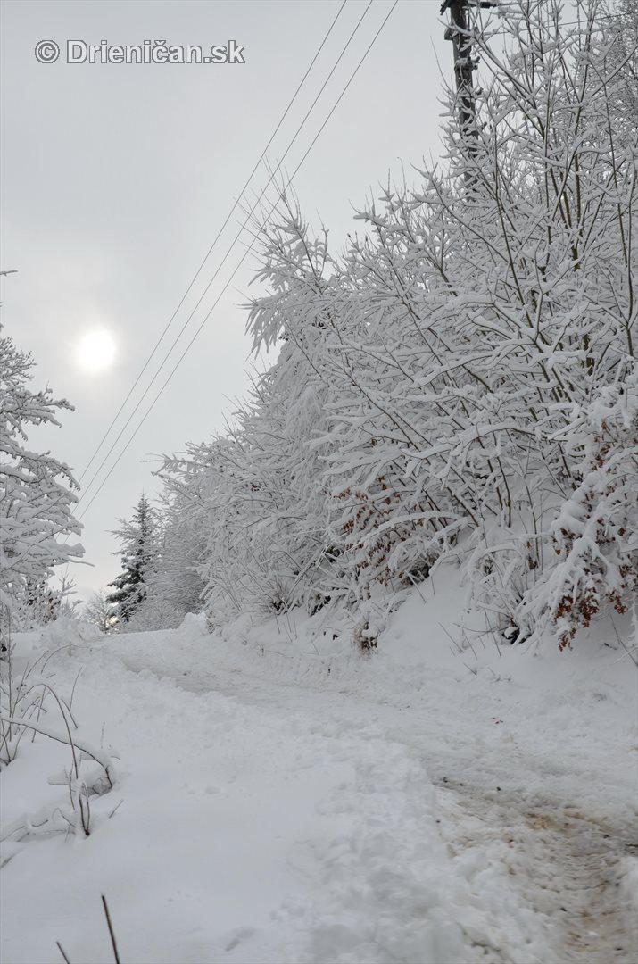 Drienica Lysa pod snehom_15