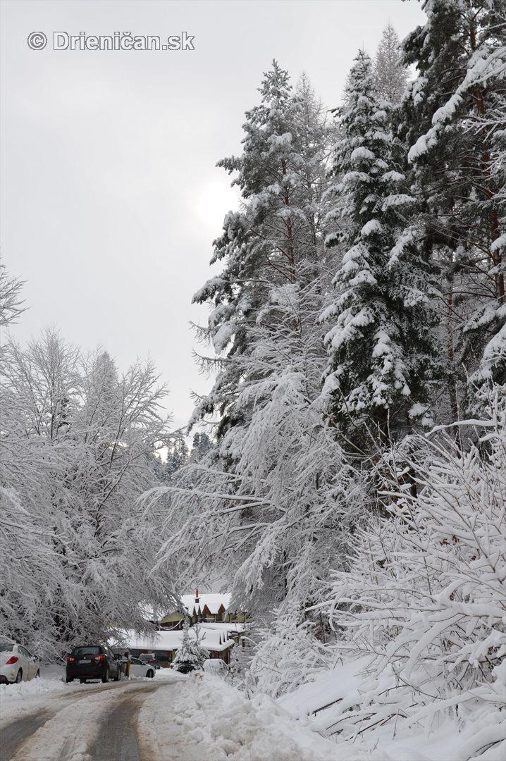 Drienica Lysa pod snehom_17