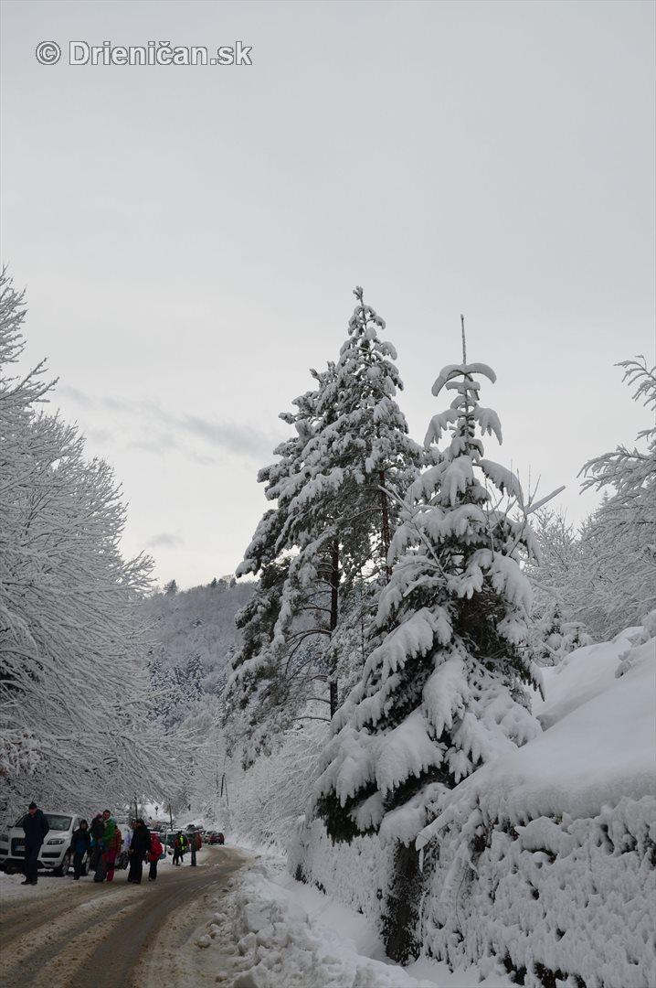 Drienica Lysa pod snehom_21