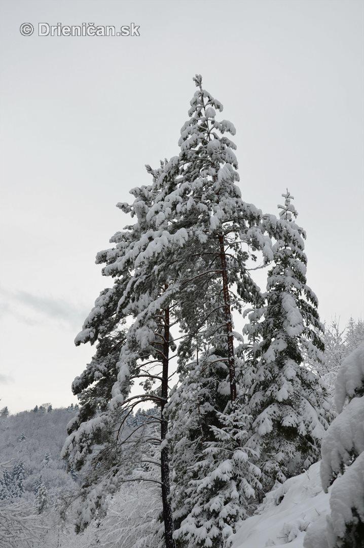 Drienica Lysa pod snehom_22
