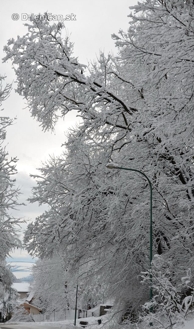 Drienica Lysa pod snehom_29