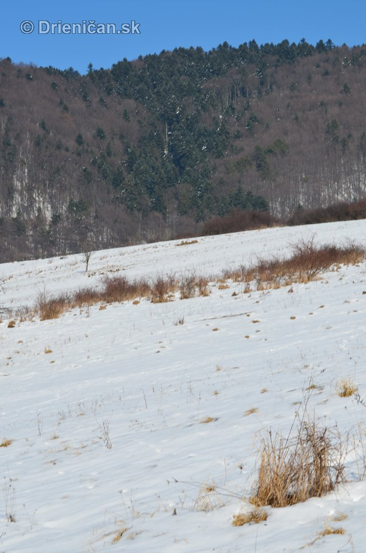 Februarovy sneh_03