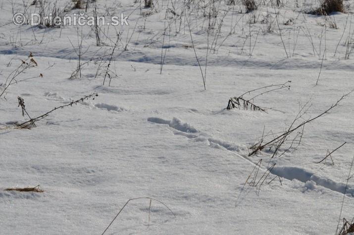 Februarovy sneh_16