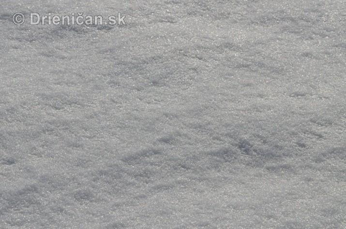 Februarovy sneh_17