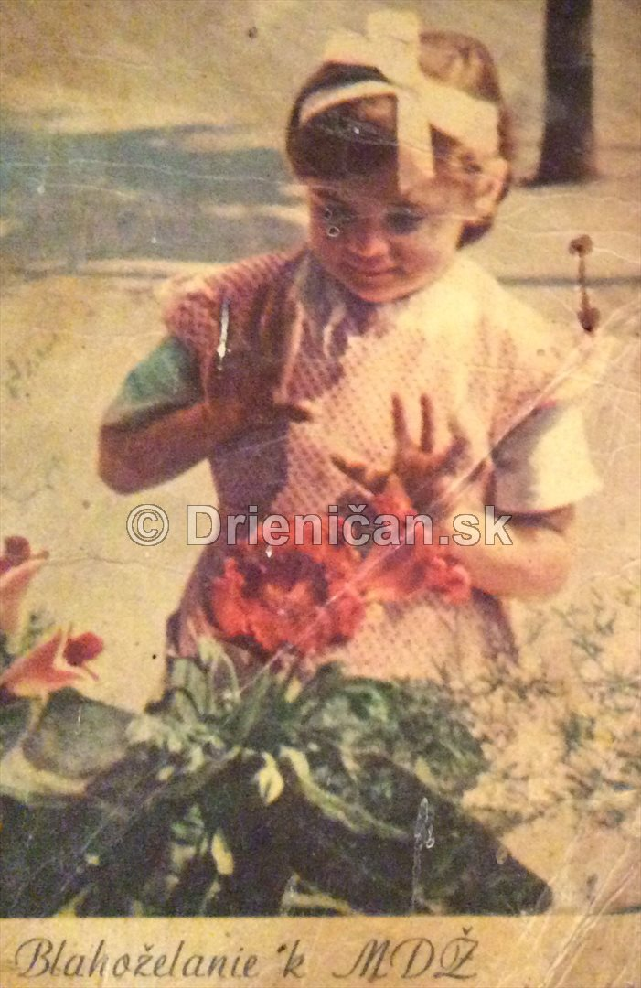 MDŽ - Medzinárodný Deň Žien, -staré pohľadnice, z r. 1961 , od otca Jána Sedláka z Drienice, svojej dcére Máríi k narodeninám, ktoré oslavuje hneď na MDŽ !