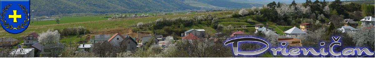 Logo č.50 , Pohľad od Kapolni na dolnú časť obce Drienica.