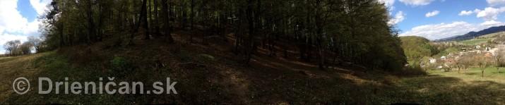 Ked Drienica v maji zakvitne panorama_02