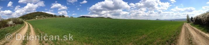 Ked Drienica v maji zakvitne panorama_04