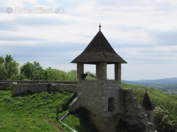 Trencianky hrad_49