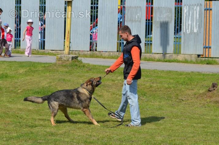 Vycvik psov Sabinov_10