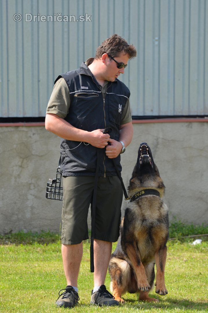 Vycvik psov Sabinov_14