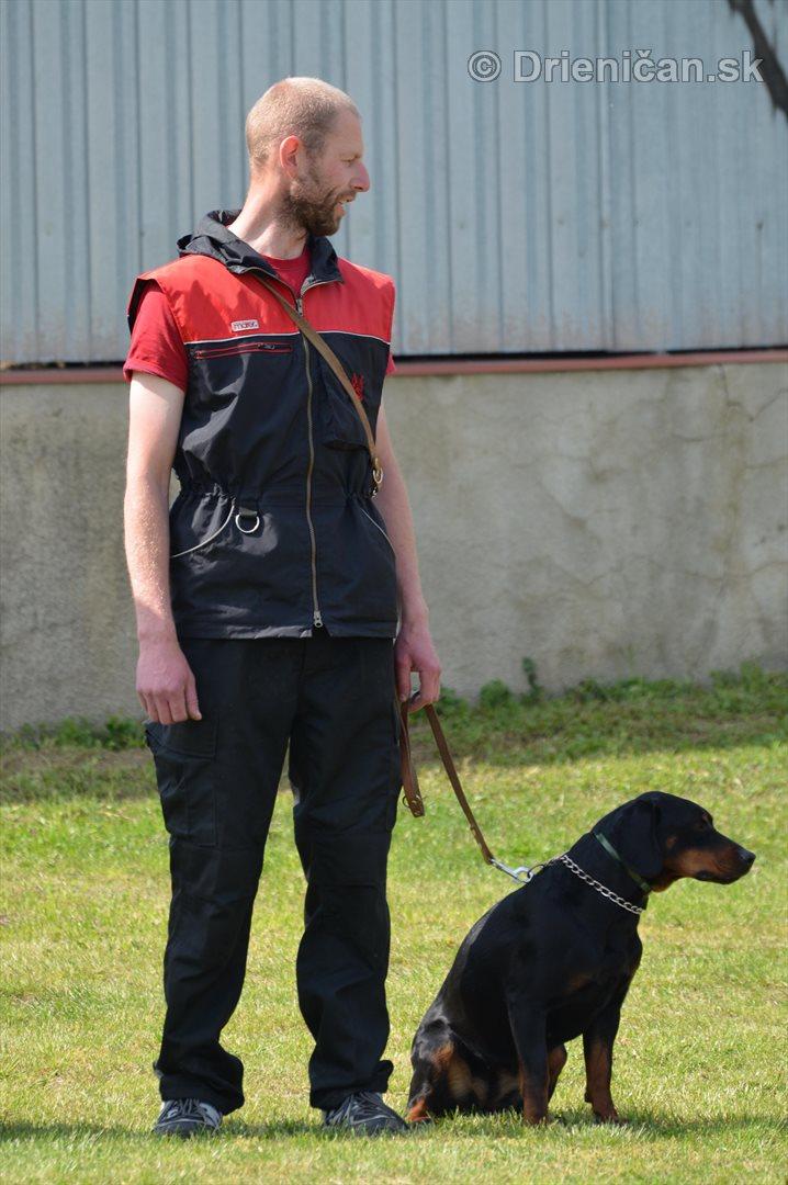 Vycvik psov Sabinov_16