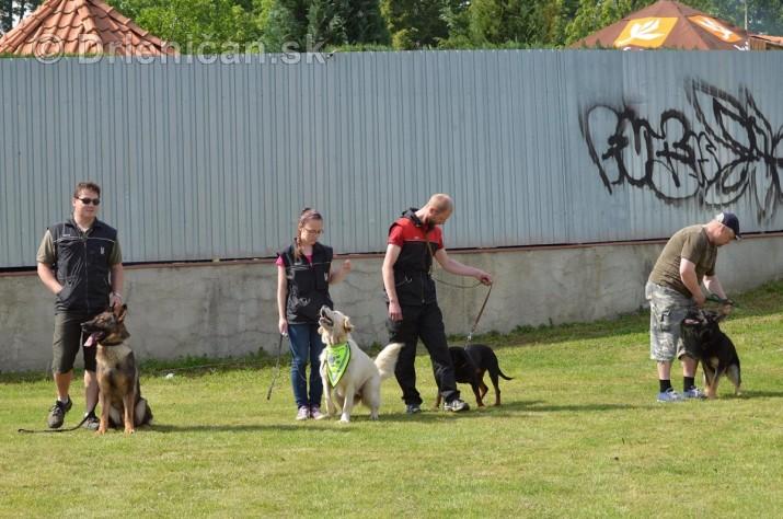 Vycvik psov Sabinov_18