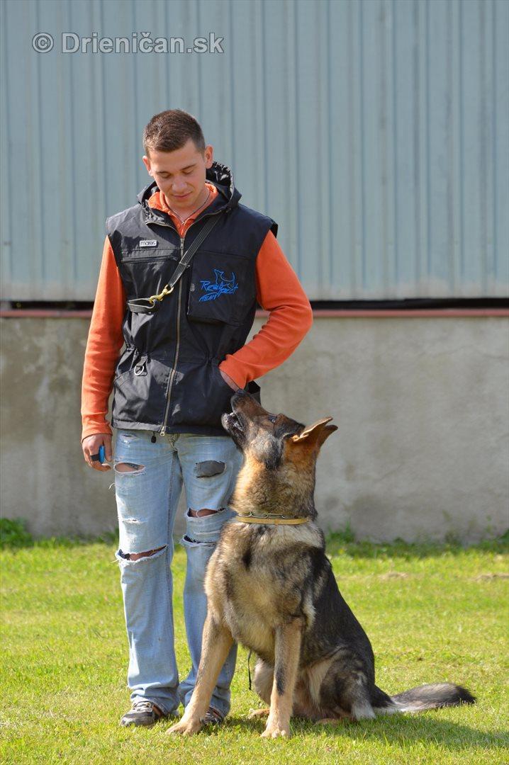 Vycvik psov Sabinov_19