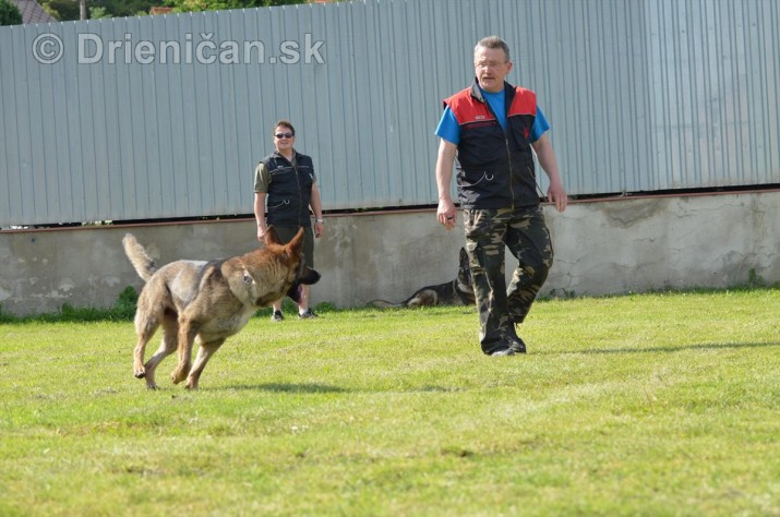 Vycvik psov Sabinov_29