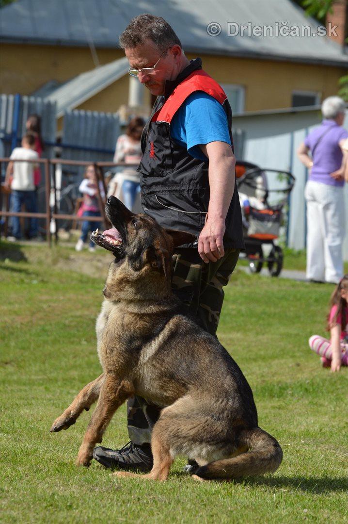Vycvik psov Sabinov_33