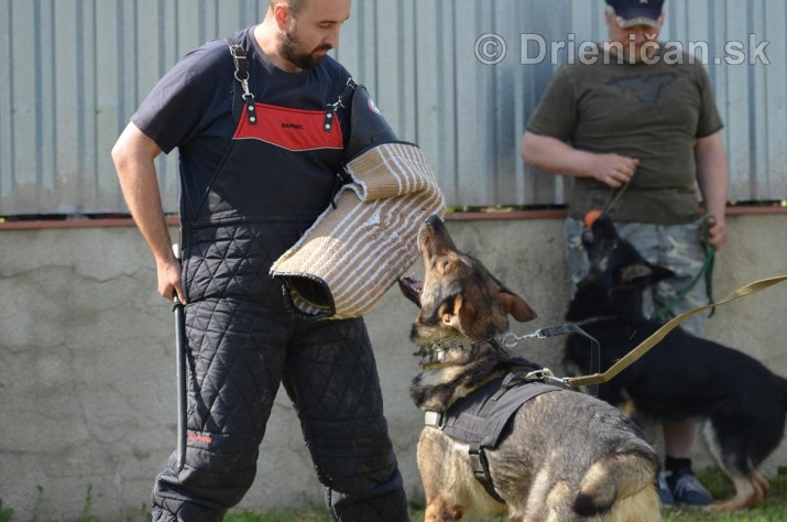 Vycvik psov Sabinov_36