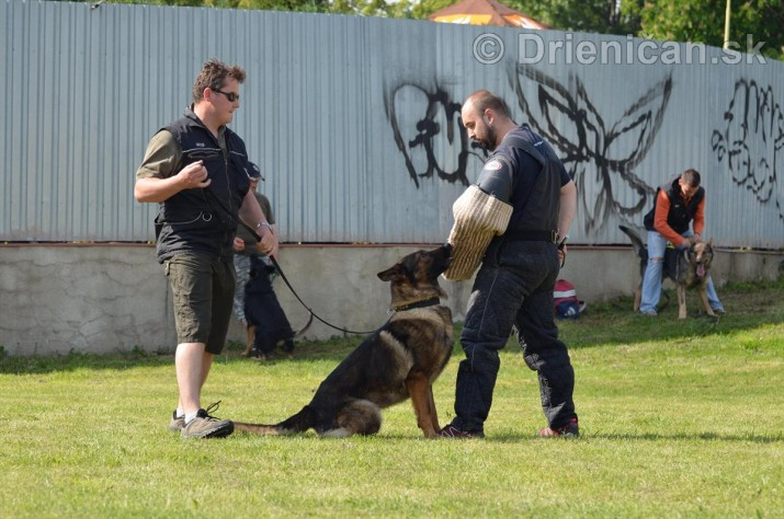 Vycvik psov Sabinov_37