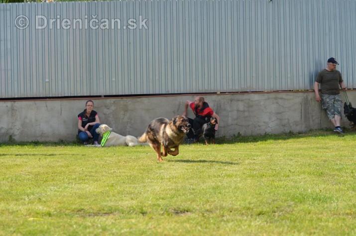 Vycvik psov Sabinov_38