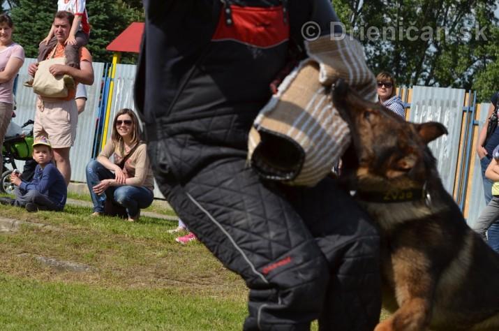 Vycvik psov Sabinov_40