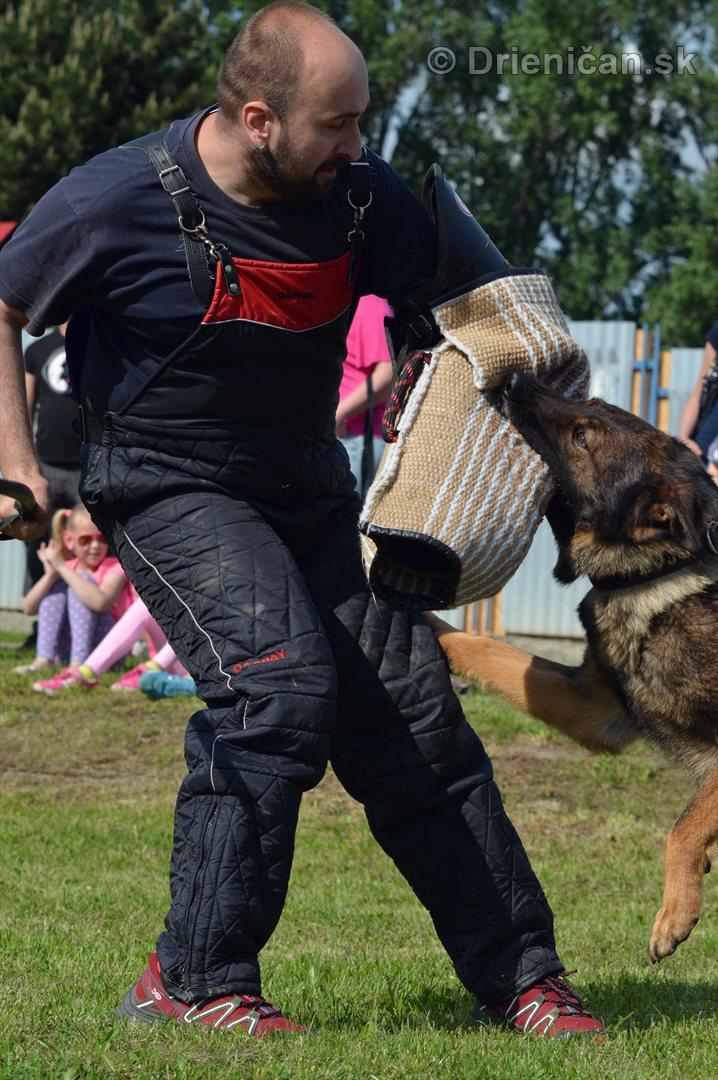 Vycvik psov Sabinov_41