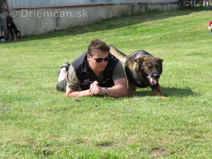 Vycvik psov Sabinov_55