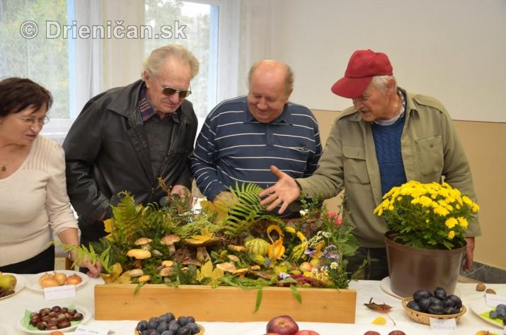Den zahradkara Drienica foto_09