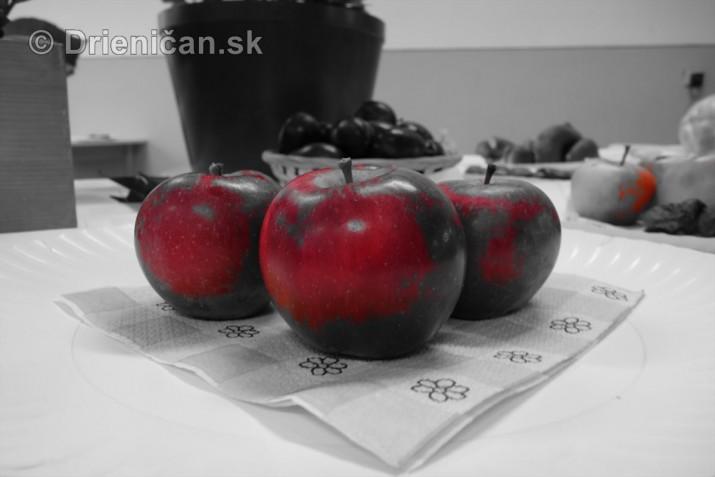 Den zahradkara Drienica foto_16