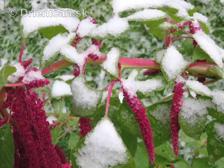 Prvy sneh_03