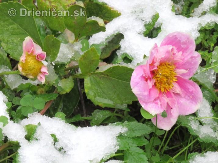 Prvy sneh_04