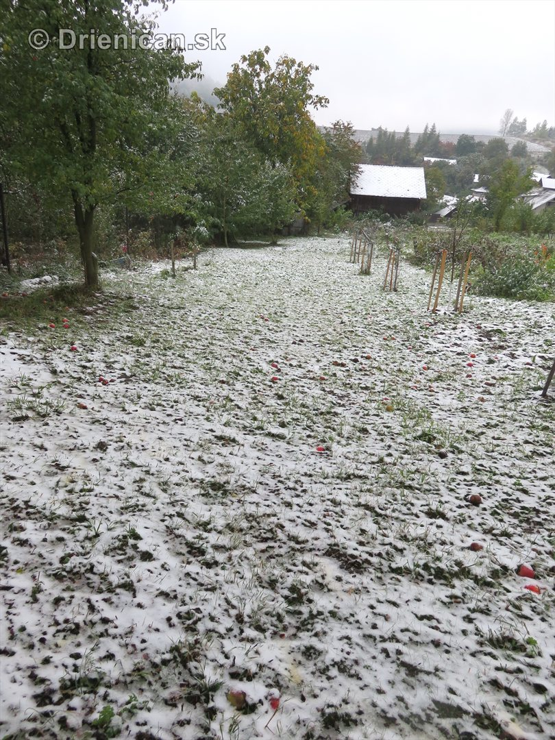 Prvy sneh_08
