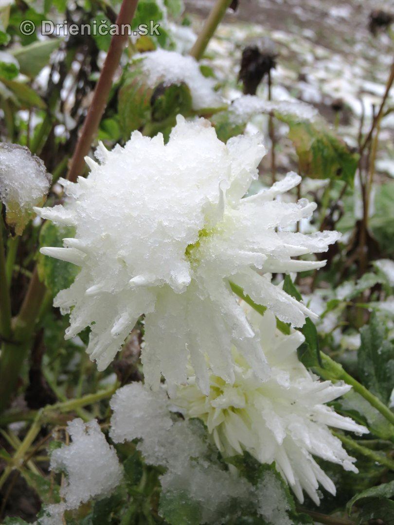 Prvy sneh_10