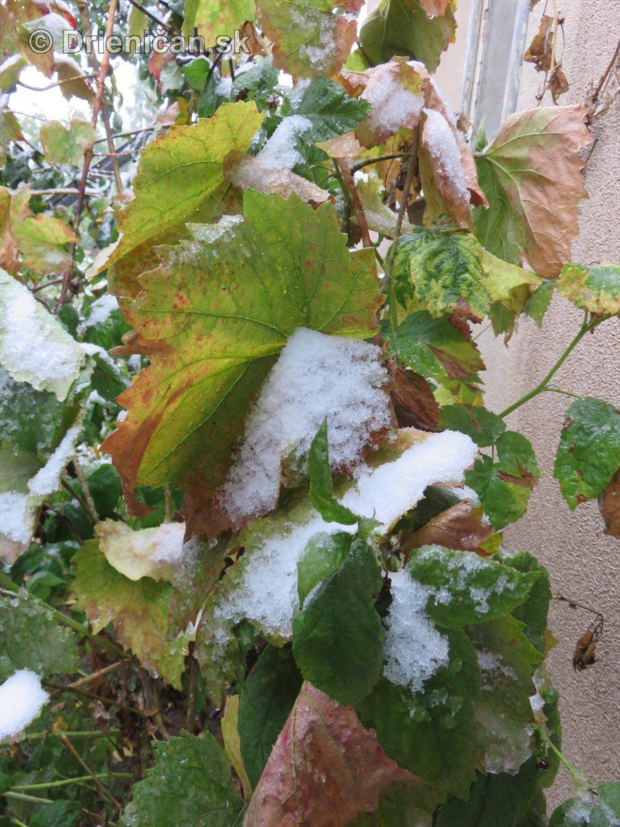 foto prvy sneh1