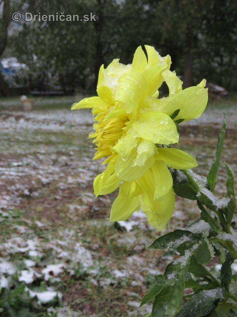 prvy sneh foto