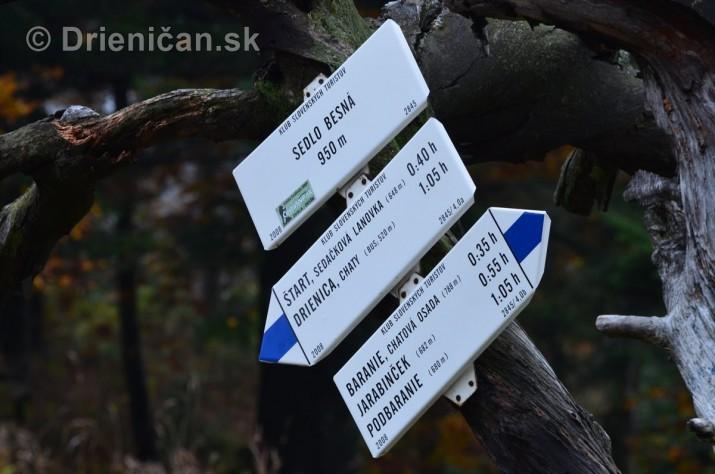 Drienica Lysa 1068 metrov nad morom_14