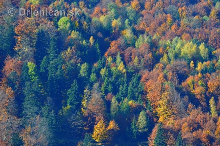 Drienica Lysa 1068 metrov nad morom_24