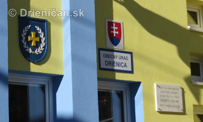 Erb obce Drienica